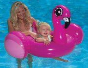 81539 | Flamingo Baby Rider - Lifestyle
