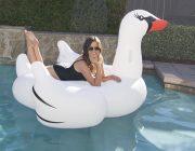 83677 | Jumbo Swan - Lifestyle