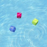 72766 | Neoprene Water Dice - Lifestyle