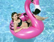 "87162 | 48"" Flamingo Tube - Lifestyle"