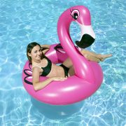 "87162 | 48"" Flamingo Tube - Lifestyle"