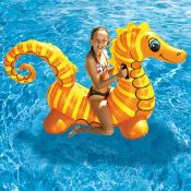 81757 | Seahorse Super Jumbo Rider - Lifestyle 1