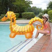 81757 | Seahorse Super Jumbo Rider - Lifestyle 5