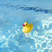 32140   Pool Duck Chlorine Dispenser