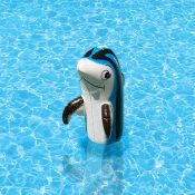 81445 | Dolphin Family of Pool Décor - Lifestyle 3