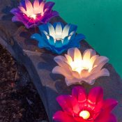 54513 | Set of 4 Floating Lotus Lights - Lifestyle 4
