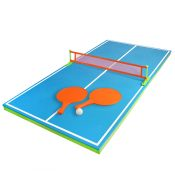 72726 | Floating Table Tennis Game