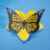 32128 | Butterfly Chlorine Dispenser - Yellow LS 1