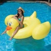 83675 | Jumbo Duck - Lifestyle 5