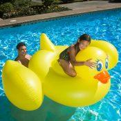 83675 | Jumbo Duck - Lifestyle 3