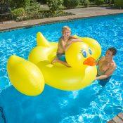 83675 | Jumbo Duck - Lifestyle 2