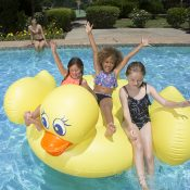 83675 | Jumbo Duck - Lifestyle