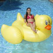 83675 | Jumbo Duck - Lifestyle 8