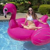 Jumbo Flamingo