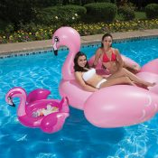54533 | Flamingo Beverage Tub - Lifestyle 9