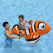 81701   Clown Fish Rider - Lifestyle 4