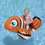 81701   Clown Fish Rider - Lifestyle 3