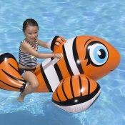 81701   Clown Fish Rider - Lifestyle 5