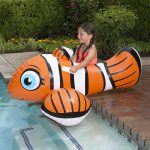 81701 | Clown Fish Rider - Lifestyle 1