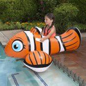 81701   Clown Fish Rider - Lifestyle 1
