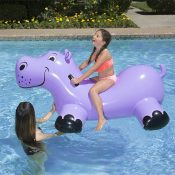 81702 | Happy Hippo Rider - Lifestyle 1