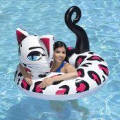 87156 | 48'' Pretty Kitty Tube - Lifestyle 6