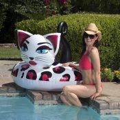 87156 | 48'' Pretty Kitty Tube - Lifestyle 3