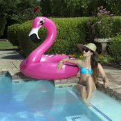 87162 | 48'' Flamingo Tube - Lifestyle 2