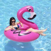 87162 | 48'' Flamingo Tube - Lifestyle 3
