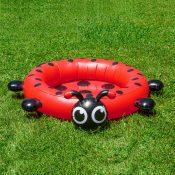 Ladybug Pool